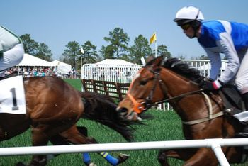 Cup race 3