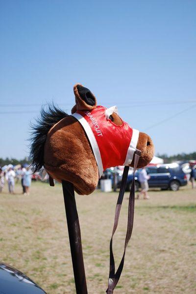Cup stick horse