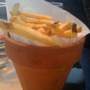 NY fries