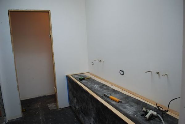 Remodel sink area
