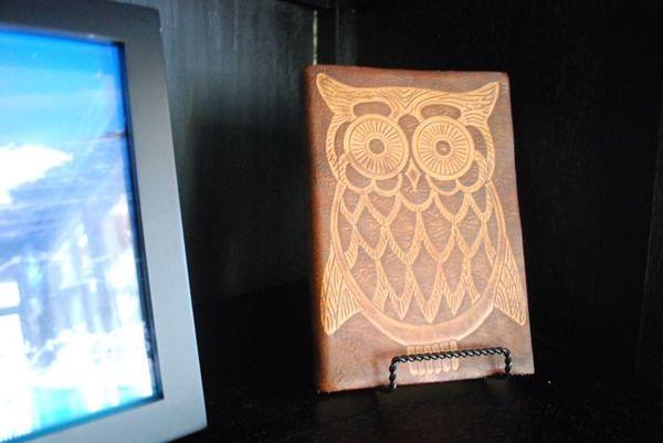 Lake owl