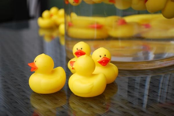 Rubber ducky3