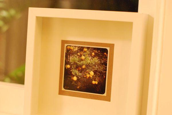 Instagram postal pix framed2