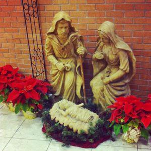 Hospital nativity