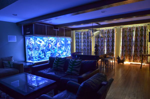 Man room fish tank in the dark | hollywood housewife