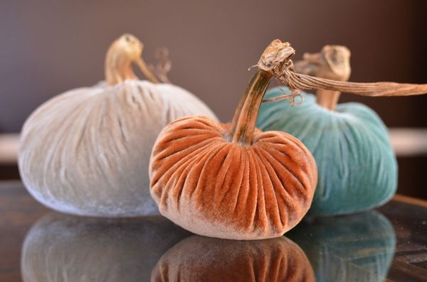 Velvet pumpkin trio cozy nest