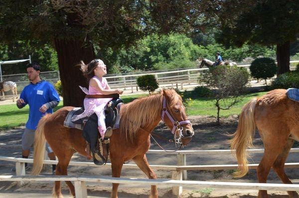 Kiddos horse fun