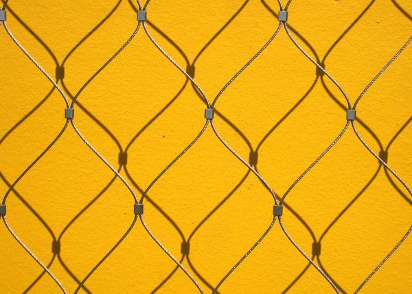 Marigold fence