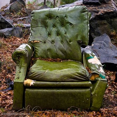 Furniture in my yard