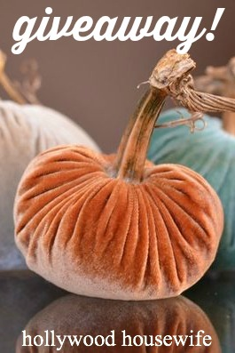 Velvet pumpkins giveaway by Hollywood Housewife